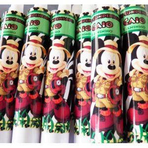 Bisnaga 30g Mickey safari
